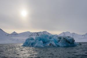 Kleine Eisberge vom nahen Gletscher treiben im Kongsfjord