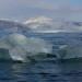 Eis vor dem Kronebreen