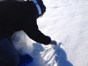 Bettina nimmt Schneeprobe (Foto: Elke Ludewig).