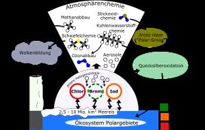 Auswirkungen der Halogenchemie in Polargebieten.