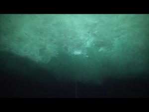 Die Unterwasserwelt der Atkabucht, das Plättcheneis bildet eine einzigartige Landschaft. Foto: AWI-Tauchteam