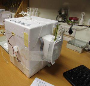 Zwei Sonden im Paket: Die kleinere Radiosonde ist an der größeren Ozonsonde befestigt. Foto: Andrea Rau
