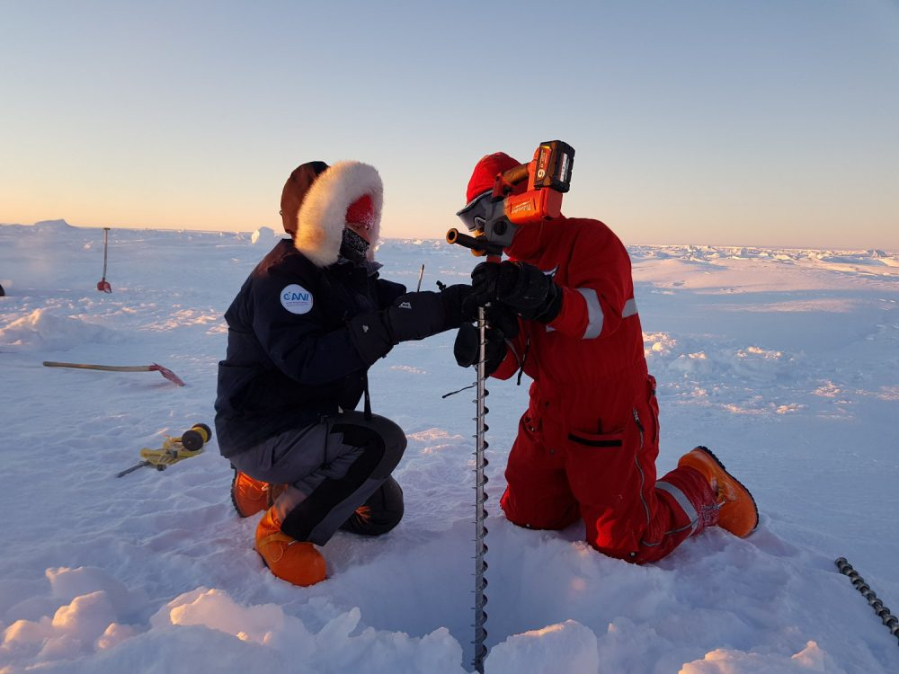 …and older sea ice, which we had to dig through a half-metre of snow to reach. Thankfully, our specially designed ice drill can be made as long as we need it to be, using extensions. (Photo: Michael Koch)