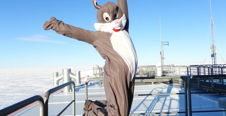 Der Osterhase auf dem Stationsdach (Foto: Noah Trumpik)