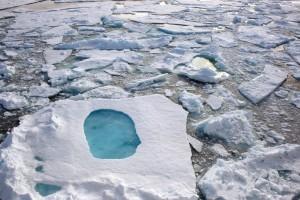 Schmelzwassertümpel auf arktischem Meereis. Bild: AWI