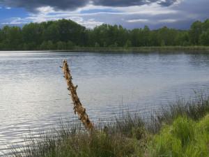 Ein sauberer Badesee. Bild: anbar, CC-BY-NC-SA 2.0