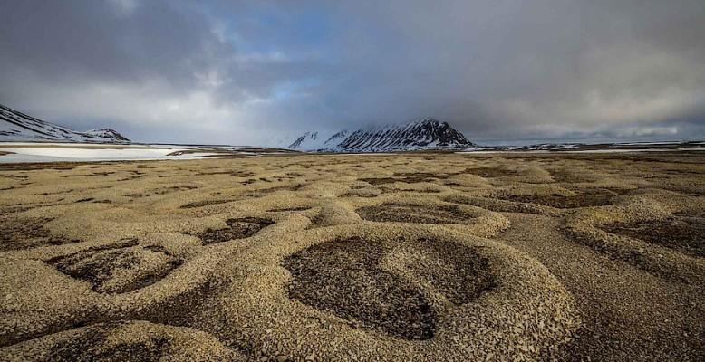 Permafrost-Strukturen auf der Norwegischen Arktis-Insel Spitzbergen. Bild: Alfred-Wegener-Institut/Jaroslav Obu