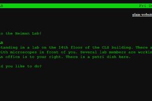 Retro-Textadventure des Heiman-Labs