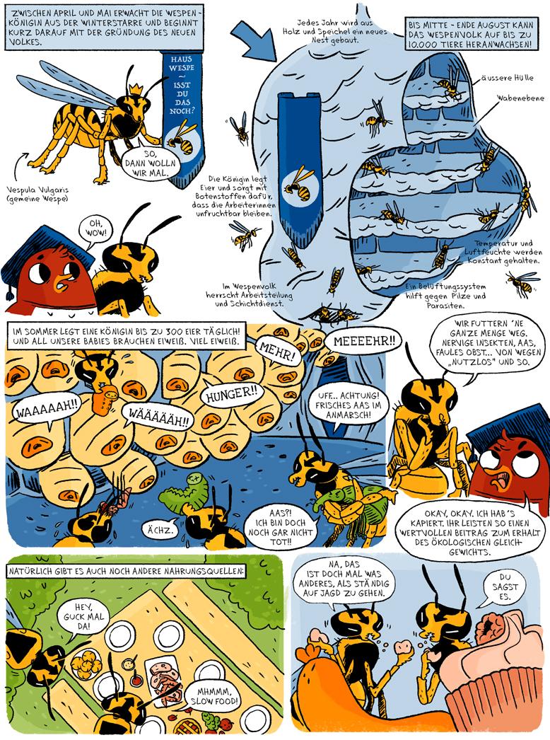 Helmholtz Wissenschaftscomic Biologie Ökologie Wespen Insekten Vespula vulgaris Hornissen