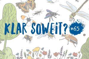 Helmholtz Wissenschaftscomic Artensterben Biodiversität Insektensterben Artenvielfalt Ökologie Insekten
