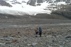 Durchquerung der erst vor wenigen Jahren vom Gletscher freigegebenen Grundmoräne