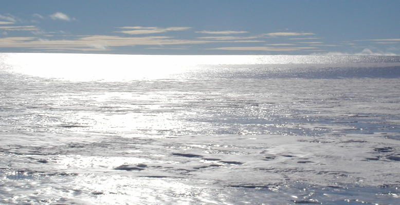 Blaueis in der Antarktis