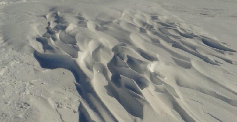 Schneestrukturen im Wind. Foto: Maria Hörhold