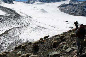 Ausbildung in Glaziologie – Sterbebegleitung für einen Gletscher