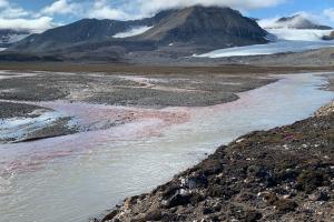 Von der Gletscherfront bis zur Senke in Meeressedimenten  – Elementkreisläufen in der sich erwärmenden Arktis auf der Spur