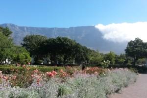 Sommerliches Kapstadt: Blick auf den Tafelberg