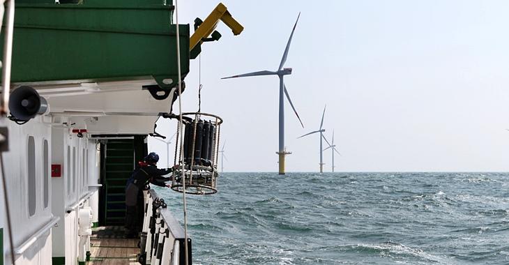 Wasserprobennahme im Windpark (Foto: Anna Reese / HZG)
