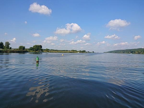 Blick auf die Elbe vom Boot aus