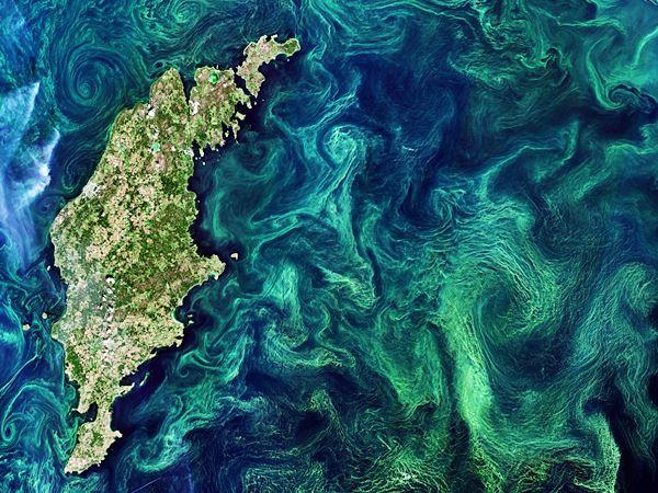Satellitenbild der zentralen Ostsee mit der Insel Gotland