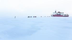 Polarsternfahrer auf dem Weg zur Healy. Foto: Stefan Hendricks