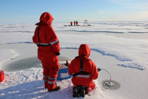 Geochemists analyzing sea ice. Photo : Gerhard Dieckmann