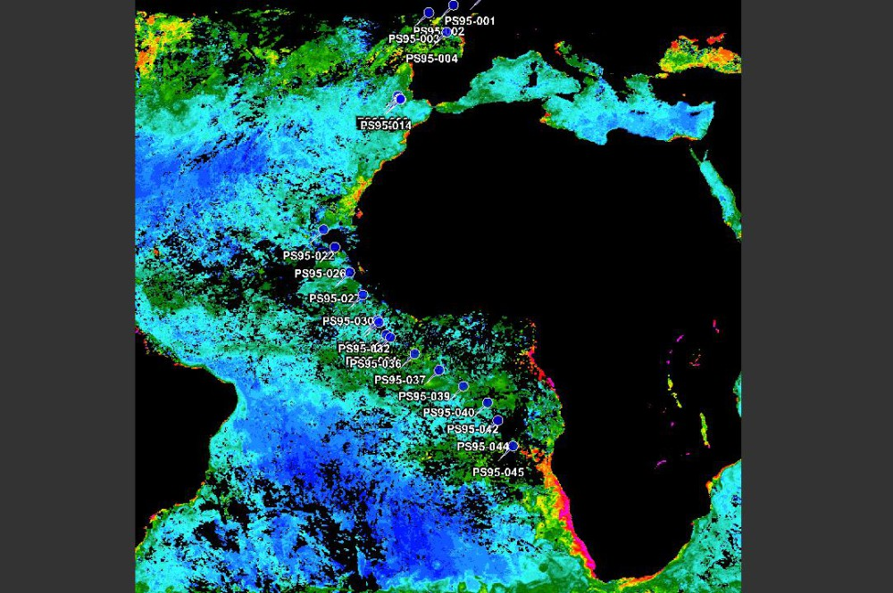 Satellite Remote Sensing Image of Benguela Current (Alfred-Wegener-Institut)