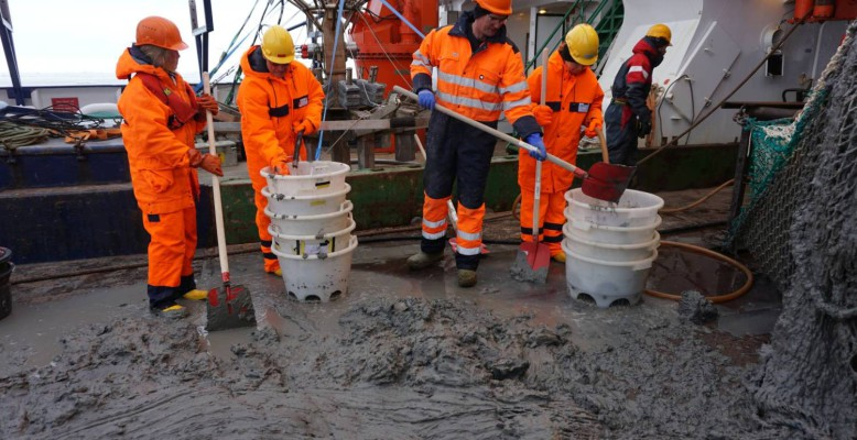 Photo 2: Sieving mud to reveal the animals within. Photo: Moritz Holtappels