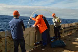 An Deck lässt unser Team de Schlauch ins Wasser und auf 25 m Tiefe herab. Dabei unterstütze uns die Besatzung der FS Polarstern (Foto: Pascal Karitta, AWI and University Saarland)