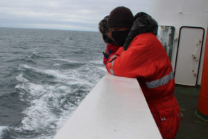 Marine Litter watch. Foto: Christophe Le Gall