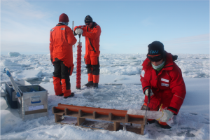 Exploring the Arctic sea ice