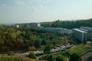 Ähnlich wie das HZDR liegt ein Teil des Campus der Kyoto Universität im Wald. Quelle: Privat