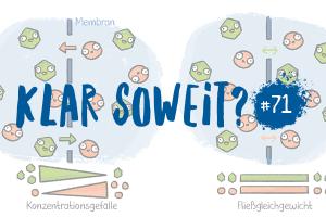Klar Soweit? #71 – Dawn of the Kopfsalat