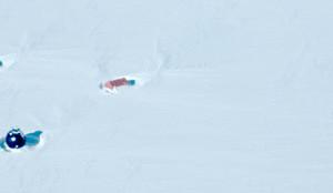Mai 2015: Feldsaison in Grönland hat begonnen