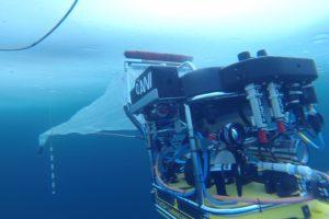 Der Tauchroboter, das Untereis-ROV Beast, während eines Tauchgangs unter Meereis mit dem neuen ROV-Netz (Foto: AWI Meereisphysik).