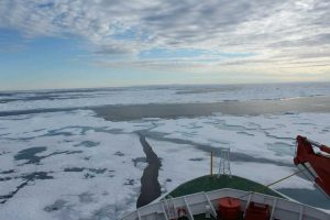 Why the Arctic?