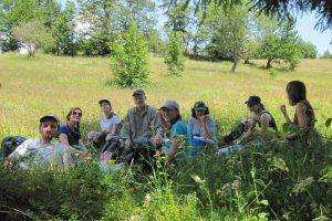 Heile Welt für Bestäuber in Transsilvanien – Bericht von einer Summer School
