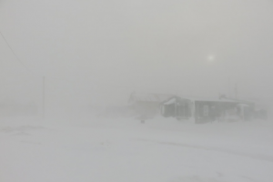 Automated Products for Forecasting Blizzard Conditions in the Arctic