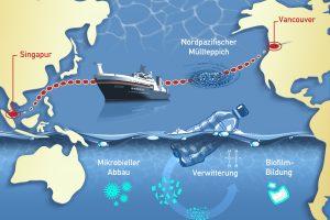 Welche Umwelteffekte hat Plastik im Meer? Fünfwöchige Pazifik-Expedition startet Ende Mai